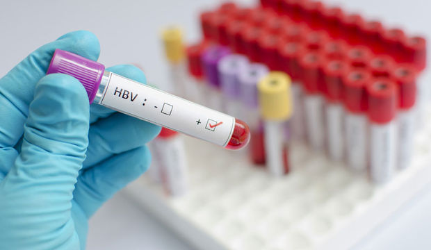 Hepatit B nece mualice olunur